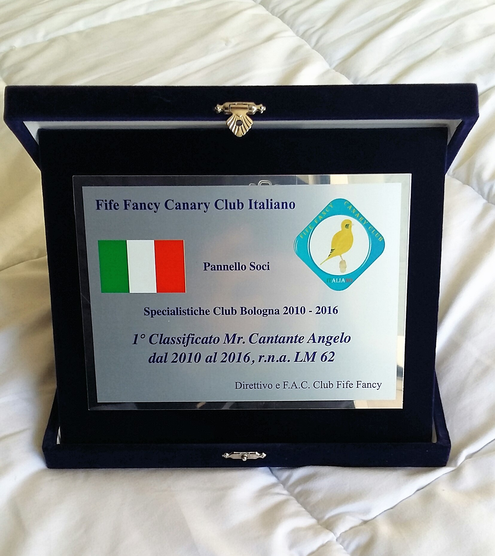 Classifica Pannello Soci | Fife Fancy Canary Club Italy